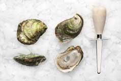 Oyster and Knife